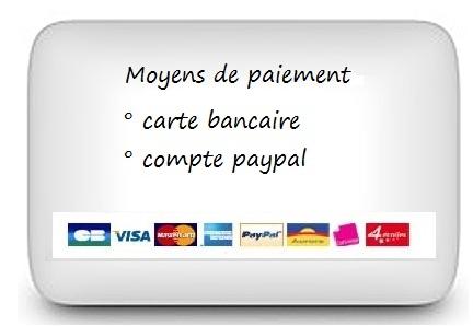 encart-paiement
